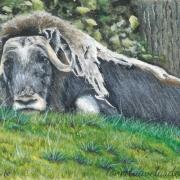 Grassy Repose - Lonetta Avelar