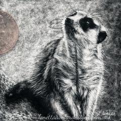 Being Cautious - Lonetta Avelar