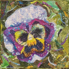 Pansy Party Of One - Lonetta Avelar